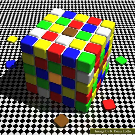 The cube in the image contains a multiude of colored squares - it's like a Rubik's Cube but with more sqaures. The visual illusion is that two of the squares look a very different color but, in fact, they are the same.